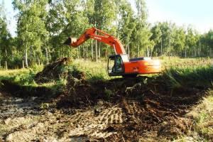 В Брянской области вернули в сельхозоборот 263,8 тысяч гектаров земли