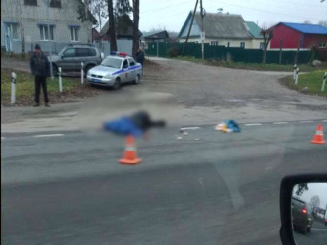 Под Брянском насмерть сбили пешехода с собакой