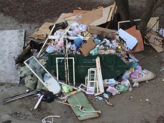 В Брянске во дворе многоэтажки выросла гора мусора