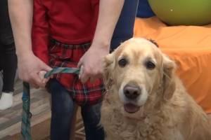 В Брянске собаку позвали на помощь особенным детям