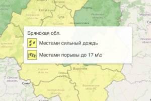 На Брянщине из-за дождя объявили жёлтый уровень опасности