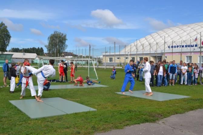 Стадион «Заря» в Стародубе отремонтируют за 39 млн рублей