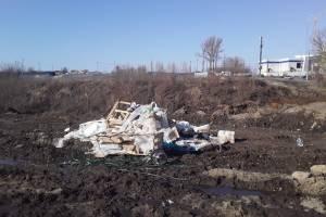 В Брянске заметили свалку возле стройки Дворца единоборств