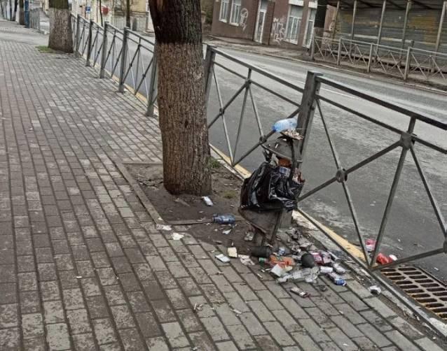 В центре Брянска улица Фокина превратилась в свинарник