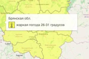 На Брянщине из-за жары объявили жёлтый уровень опасности
