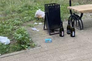 В Брянске алкаши превратили в свалку «Парк Поколений»