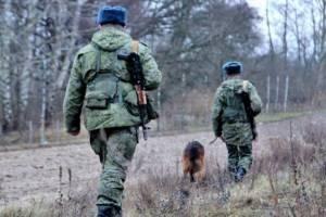 На брянской границе с Белоруссией сотрудники ФСБ поймали 100 нелегалов