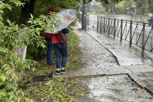 В Брянске униженных пешеходов загнали в кусты