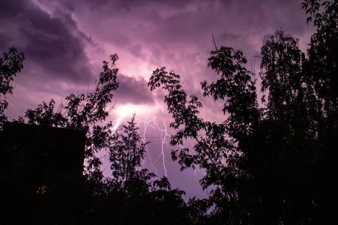 Брянцам в среду обещают дожди с грозами и +22ºC