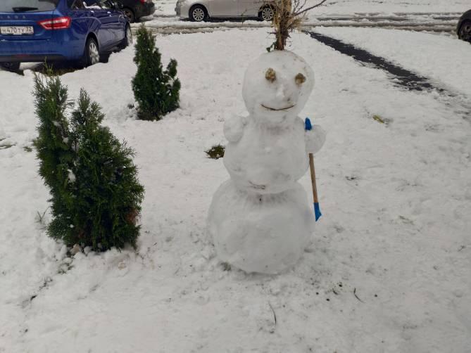 В Брянске слепили огромную армию снеговиков