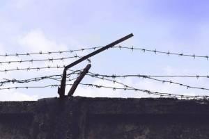 В Брянске заключённым сделали прививку от коронавируса