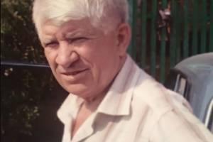 На Брянщине нашли живым заблудившегося в лесу пенсионера Ивана Хромугина