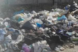 Возле садового общества под Брянском за год не убрали мусорный вал