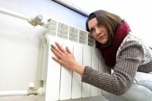 В Брянске активисты ОНФ заметили отсутствие отопления в холода