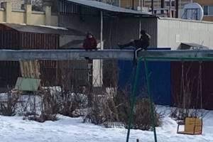 В Новозыбкове двое детей обматерили пожилых людей