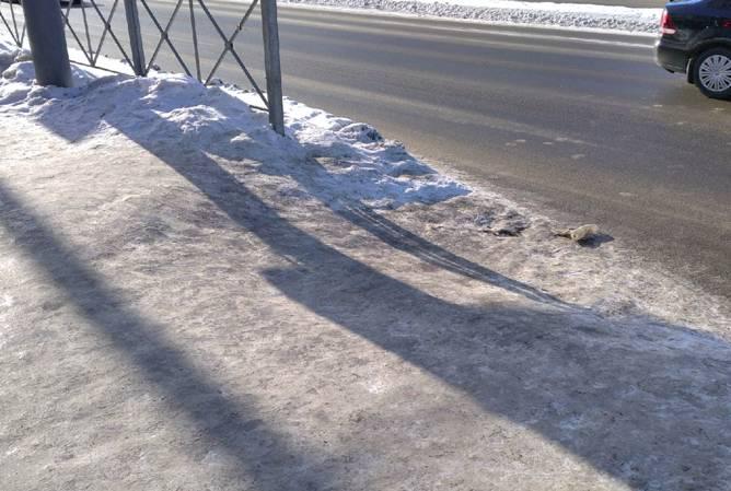 В Брянске тротуары превратились в ледяной каток