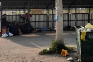 В Брянске мусорную площадку оккупировали бомжи и собаки