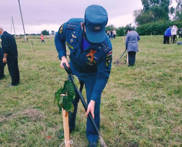 В Жирятинском районе спасатели заложили сад