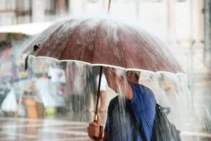 Брянской области предсказали дождливую пятницу