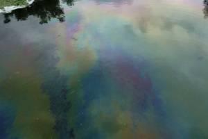 В Новозыбкове заметили бензиновые разводы в реке Ипуть