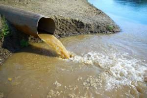 В Дубровке биохимический комбинат уличили в загрязнении реки Сеща