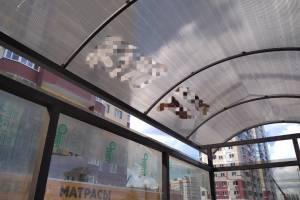 Новые брянские остановки-теплицы раскрасили тайными знаками