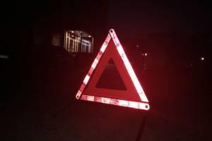 В Брянске иномарка влетела в дерево: 18-летняя девушка сломала нос