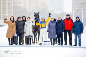 Локотской конный завод признали лучшим в стране