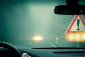 Брянских водителей призвали к осторожности на туманных дорогах