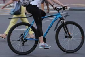 В Брянске не поделили пляж женщины и велосипедисты