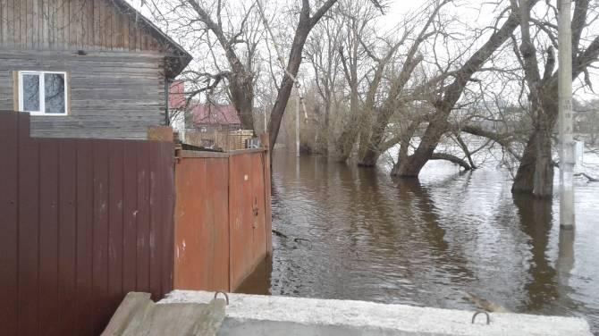 В Брянске разливом Десны затопило дома на улице Нижне-Заречной