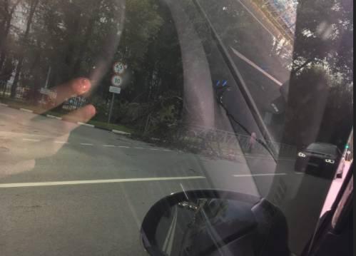 В Брянске ураганный ветер обрушил на дорогу дерево