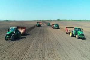 Брянщина оказалась в лидерах по освоению сельхозземель