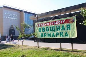 В Брянске работу ярмарок выходного дня продлили до 5 декабря