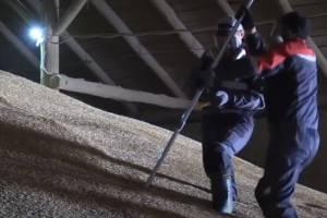 Брянские ветеринары помогут аграриям сберечь урожай