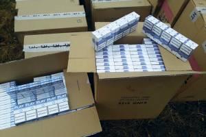 Брянские пограничники задержали сигаретного контрабандиста из Беларуси