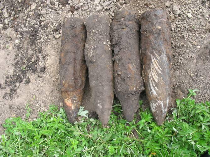 В лесу под Навле нашли 4 артиллерийских снаряда