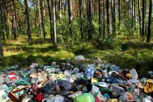 В Климовском районе в лесу арендатор развел свалку