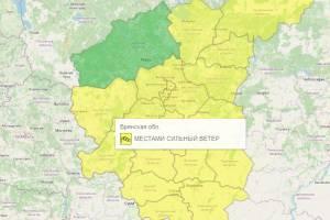 В Брянской области из-за ветра объявили желтый уровень погодной опасности