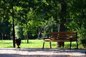 В унечском парке появились игровая площадка и видеонаблюдение