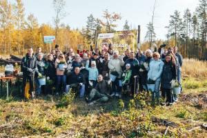 Волонтёры Брянского отделения Сбербанка высадили 12 тысяч саженцев