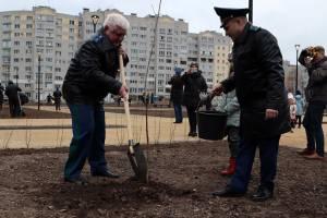 В Брянске в новом сквере Рекункова высадили 58 кленов