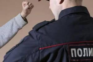 Жителя Новозыбкова оштрафовали на 60 тысяч рублей за избиение полицейского