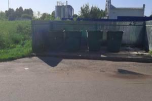 В Трубчевске нашли виновных в утонувшей в мусоре контейнерной площадке