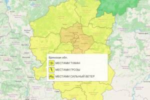 В Брянской области объявлен желтый уровень опасности из-за грозы и ветра