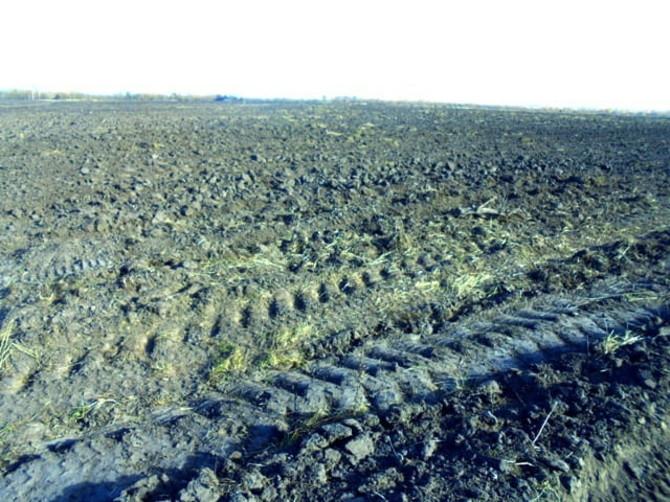 В Навлинском районе собственника заставили обработать землю
