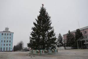 В Новозыбкове брянцы попрощались с новогодней елкой