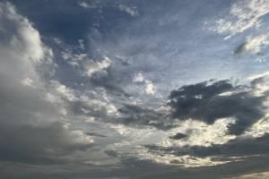 В субботу в Брянской области обещают +29 градусов