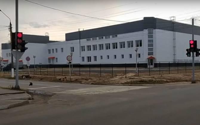 В Жуковке вырубили липовую аллею ради забора вокруг нового ФОКа