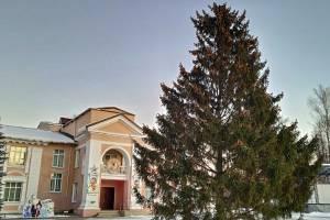 В поселке Белые Берега на главной площади установили ель
